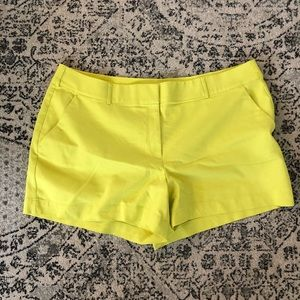 Yellow Lane Bryant Shorts